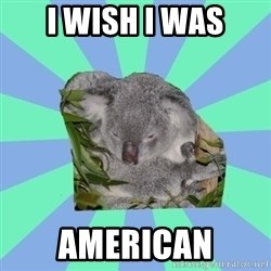 Clinically Depressed Koala - I WISH I WAS AMERICAN