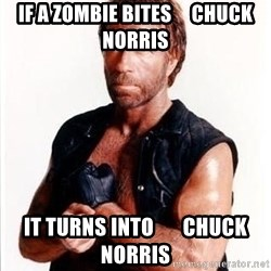 Chuck Norris  - if a zombie bites     chuck norris it turns into       chuck norris