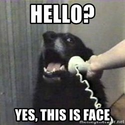 hello? yes this is dog - hell0? yes, this is face