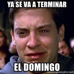 spiderman cry - ya se va a terminar el domingo