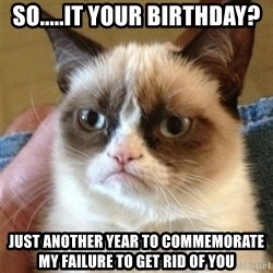 Grumpy Cat  - So.....it your birthday? Just another year to commemorAte my failure to get rid of you