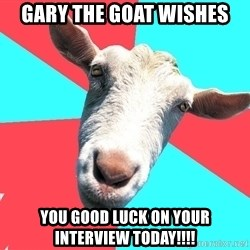 Oblivious Activist Goat - GARY THE GOAT WISHES YOU GOOD LUCK ON YOUR INTERVIEW TODAY!!!!