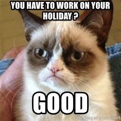 Grumpy Cat  - you have to work on your holiday ? good