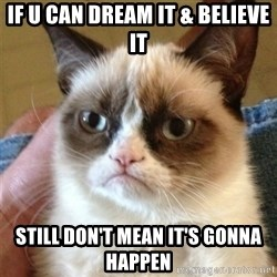 Grumpy Cat  - if u can dream it & believe it still don't mean it's gonna happen