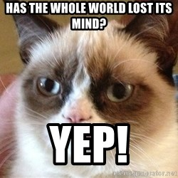 Angry Cat Meme - Has the whole world lost its mind? Yep!