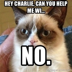 Grumpy Cat  - Hey charlie, can you help me wi... no.