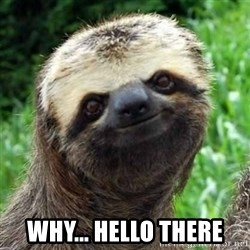 Sarcastic Sloth -  WHY... Hello there