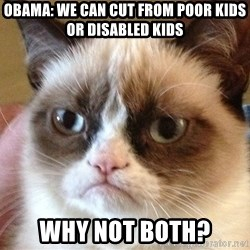 Angry Cat Meme - Obama: We can cut from poor kids or disabled kids Why not both?
