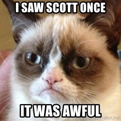 Angry Cat Meme - I SAW SCOTT ONCE IT WAS AWFUL