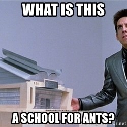 center for ants - WHAT IS THIS A SCHOOL FOR ANTS?