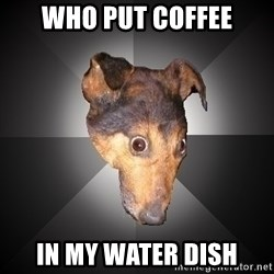 Depression Dog - who put coffee in my water dish