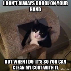 cool cat - I don't always drool on your hand but when I do, it's so you can clean my coat with it