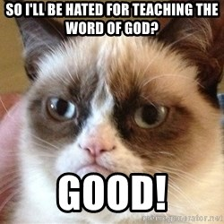 Angry Cat Meme - So i'll be hated for teaching the word of god? good!