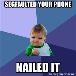 Success Kid - SegFaulted your phone  NAILED IT
