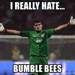 Real Goalkeeper - I really hate... Bumble bees