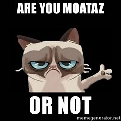 Grumpy cat pointing - are you moataz  or not