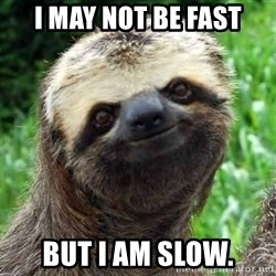 Sarcastic Sloth - I may not be fast but I am slow.