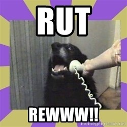 Yes, this is dog! - rut rewww!!