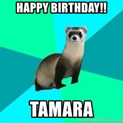 Obvious Question Ferret - happy birthday!! tamara