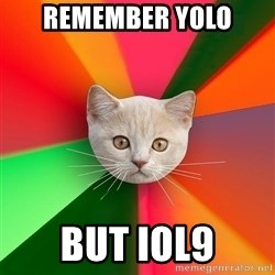 Advice Cat - remember yolo but iol9