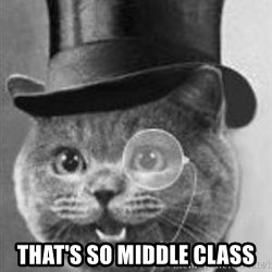 Monocle Cat -  That's so middle class