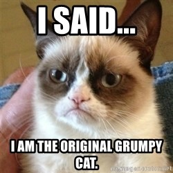 Grumpy Cat  - I said... i am the original grumpy cat.