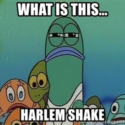 suspicious spongebob lifegaurd - what is this... harlem shake