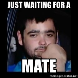 just waiting for a mate - JUST WAITING FOR A  MATE