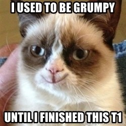 Tard the happy cat - I used to be grumpy until i finished this t1