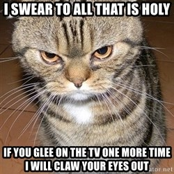 angry cat 2 - i swear to all that is holy if you glee on the tv one more time i will claw your eyes out