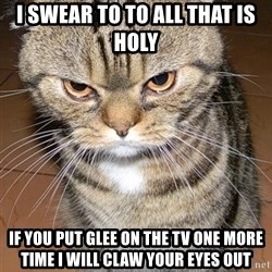 angry cat 2 - i swear to to all that is holy if you put glee on the tv one more time i will claw your eyes out