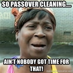Ain't Nobody got time fo that - SO PASSOVER CLEANING....  ain't nobody got time for that!