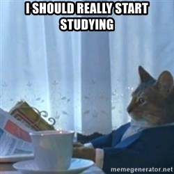 Sophisticated Cat Meme - i should really start studying