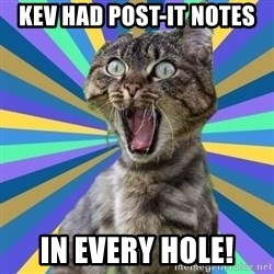 OMG Cat - kev had post-it notes in every hole!