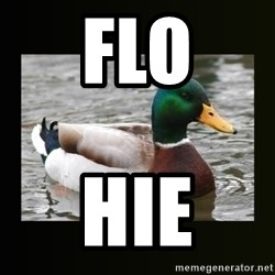 good advice duck - Flo hie