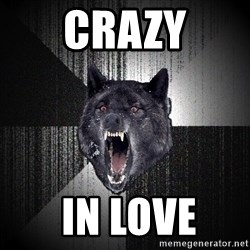 Insanity Wolf - crazy  in love