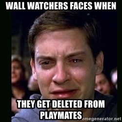 crying peter parker - wall watchers faces when they get deleted from Playmates