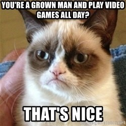 Grumpy Cat  - you're a grown man and play video games all day? that's nice