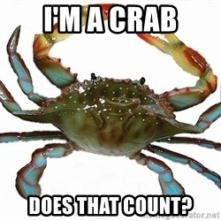 Boss Crab - i'm a crab does that count?