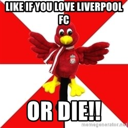 Liverpool Problems - Like IF YOU LOVE LIVERPOOL FC OR DIE!!