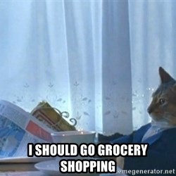 Sophisticated Cat -  i should go grocery shopping