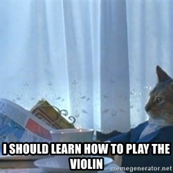 Sophisticated Cat -  I should learn how to play the violin