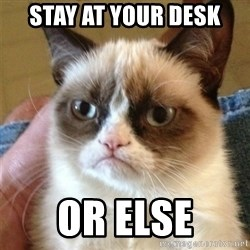 Grumpy Cat  - stay at your desk or else