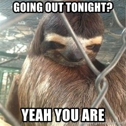 Creepy Sloth Rape - going out tonight? yeah you are