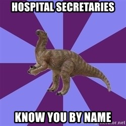 IBS Iguanadon - Hospital secretaries know you by name