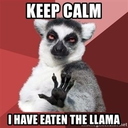Chill Out Lemur - Keep Calm I have eaten the llama