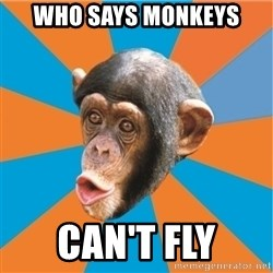 Stupid Monkey - who says monkeys can't fly