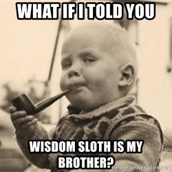 Smart Baby - what if I told you wisdom sloth is my brother?