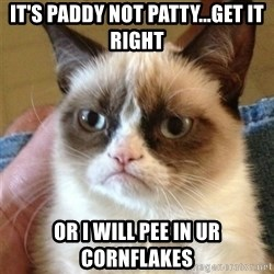 Grumpy Cat  - it's Paddy NOt patty...get it right or i will pee in ur cornflakes