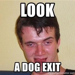 [10] guy meme - Look A dog exit